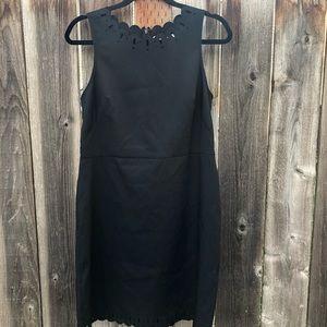 NWOT Loft Career Dress